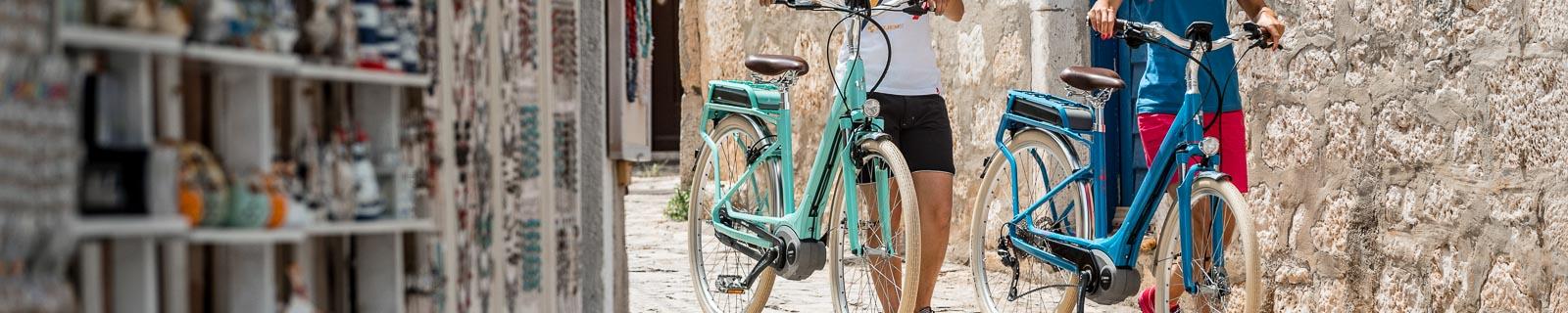 Bicicleta de trekking Retro y Vintage
