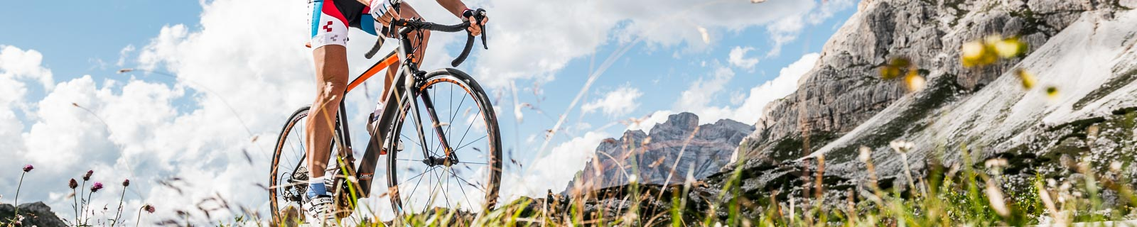 Bicicletas de carretera de aluminio para damas