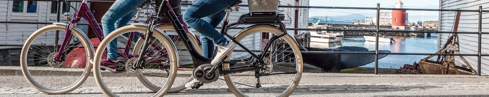 Bicicleta E-Trekking con cuadro de fácil acceso